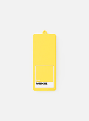 [MD &P!CK] BoA  SM ARTIST + PANTONE™ LUGGAGE NAME TAG