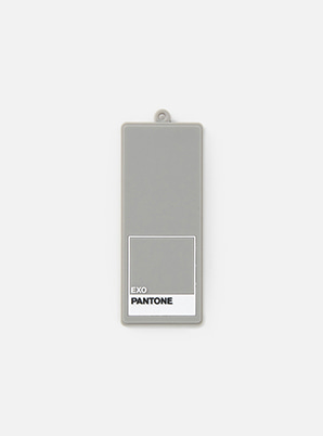 EXO 2019 SM ARTIST + PANTONE™ LUGGAGE NAME TAG