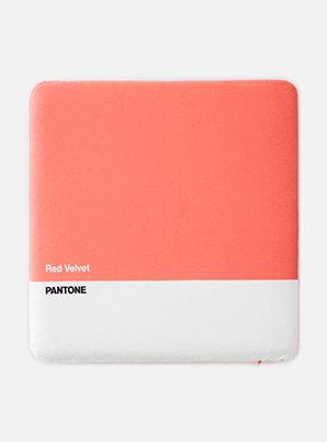 Red Velvet 2019 SM ARTIST + PANTONE™ SITTING CUSHION