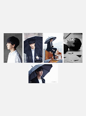 YESUNG 4X6 PHOTO SET - Spring Falling
