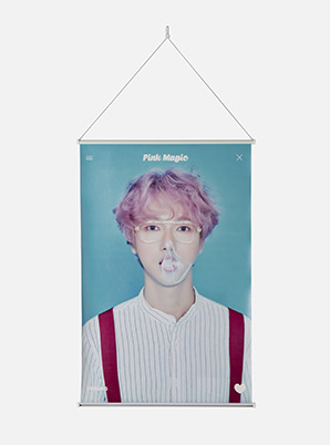 YESUNG WALL SCROLL POSTER